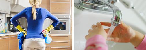 domestic-clean